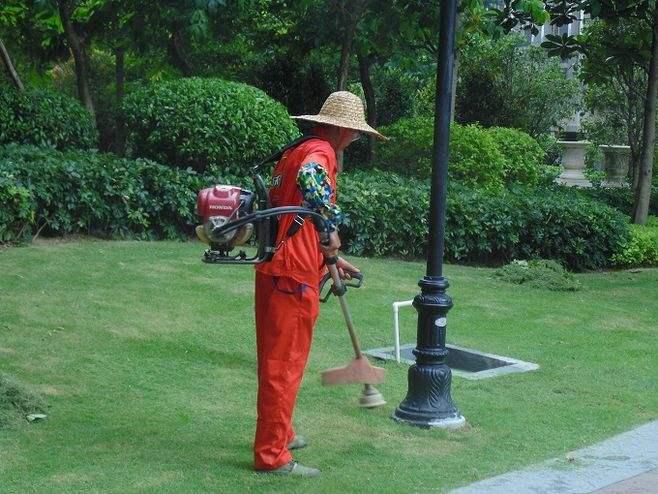 从化温泉镇酒店园林绿化养护